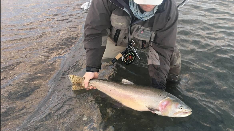 Pyramid Lake Fishing Report Jan 12, 2018